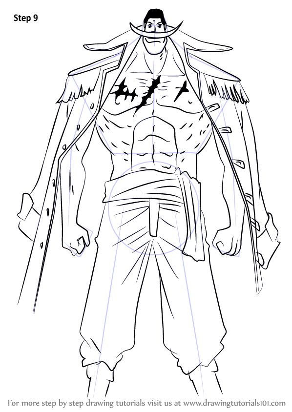 Step by Step How to Draw Edward Newgate aka Whitebeard from One ...