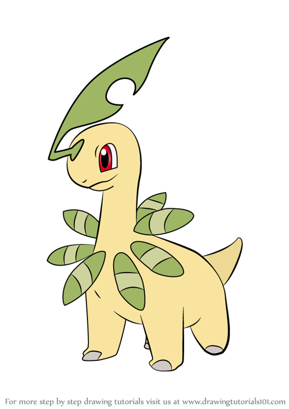 Learn How to Draw Bayleef from