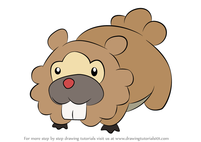 Learn How To Draw Bidoof From Pokemon Step By Drawing Tutorials
