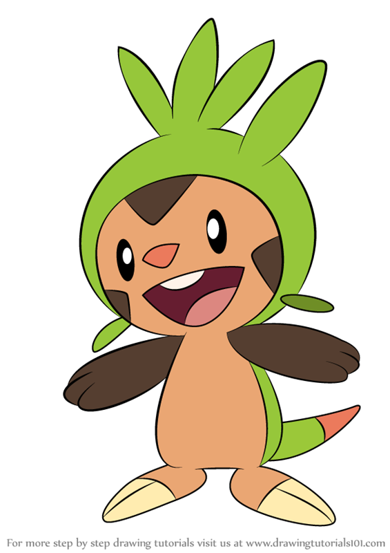 Learn How To Draw Chespin From Pokemon Pokemon Step By