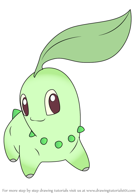 Learn How To Draw Chikorita From Pokemon Pokemon Step By Step