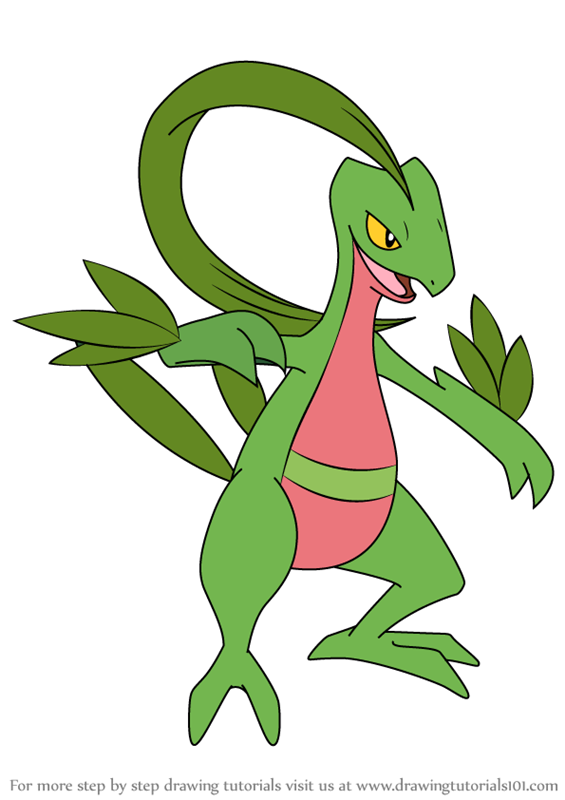 Learn How to Draw Grovyle from Pokemon Pokemon Step by