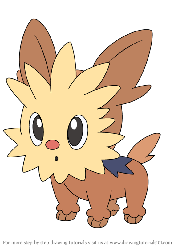 Learn How To Draw Lillipup From Pokemon Pokemon Step By