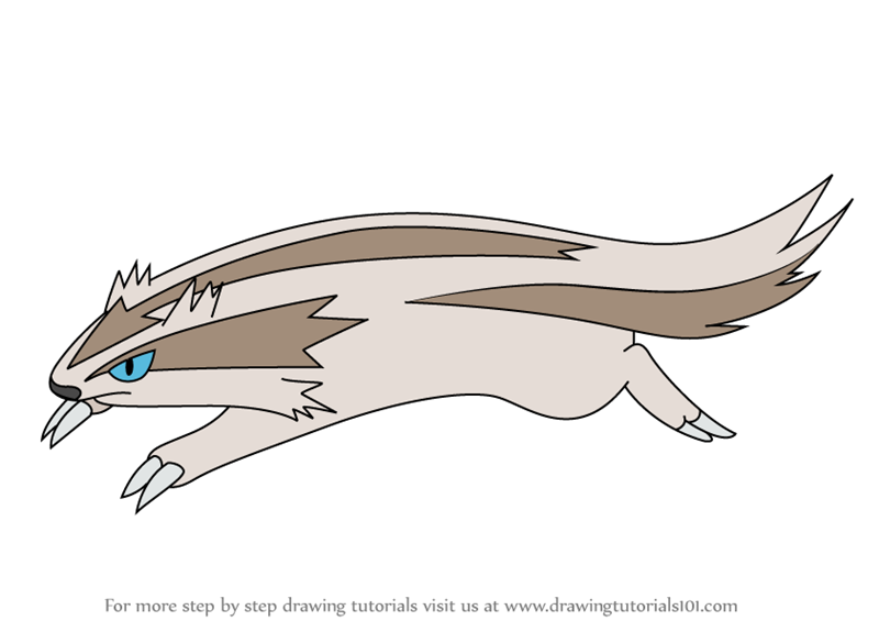 Learn How to Draw Linoone from Pokemon Pokemon Step by Step Drawing Tutorials
