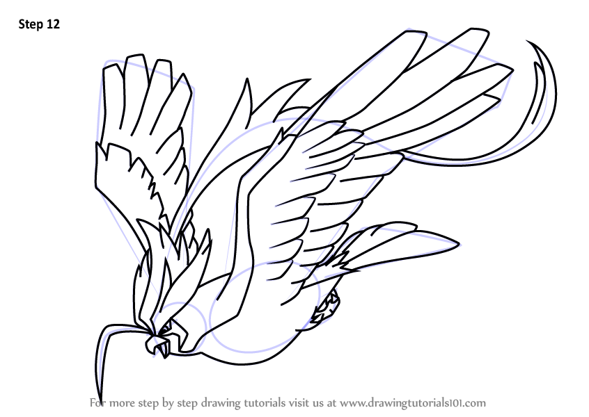 Step By Step How To Draw Mega Pidgeot From Pokemon