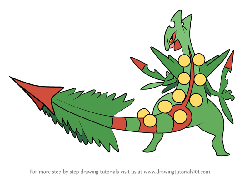 Mega Charizard X Para Colorear: Learn How To Draw Mega Sceptile From Pokemon (Pokemon