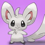 How to Draw Minccino from Pokemon