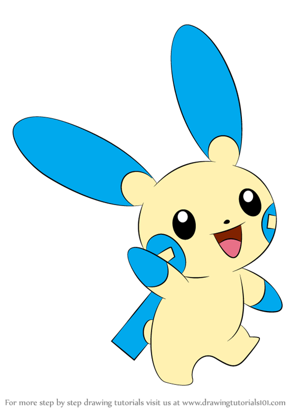 learn how to draw minun from pokemon  pokemon  step by