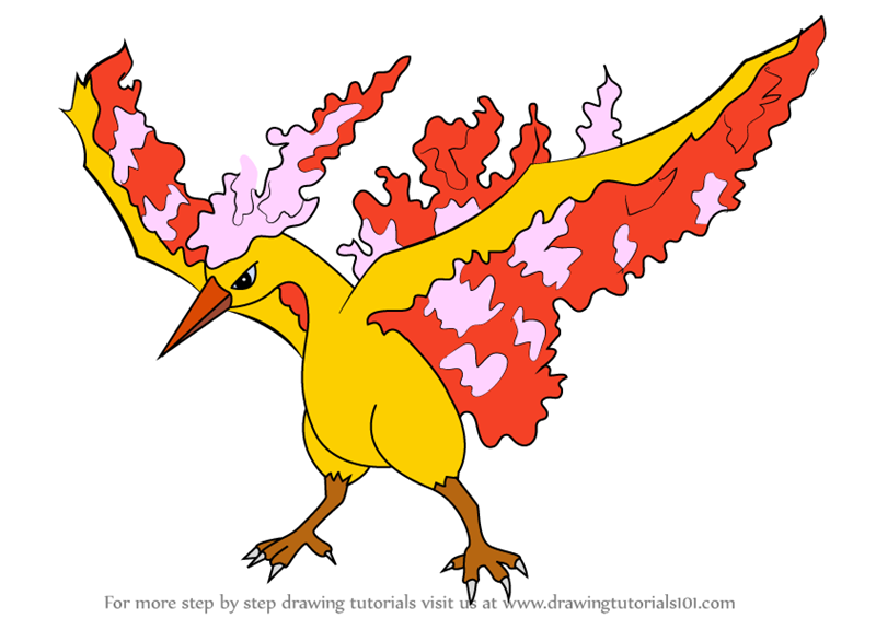 Learn How to Draw Moltres from Pokemon (Pokemon) Step by