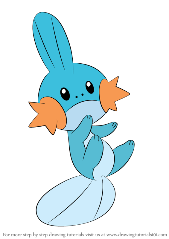 Learn How To Draw Mudkip From Pokemon Pokemon Step By