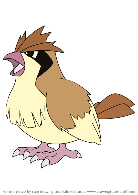 Learn how to draw pidgey from pokemon pokemon step by for Pidgey coloring page