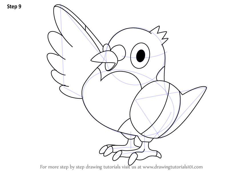 Step By Step How To Draw Pidove From Pokemon