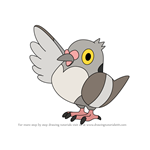 How to Draw Pidove from Pokemon