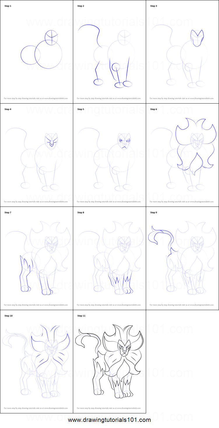 How to draw pyroar from pokemon printable step by step for Pyroar coloring pages