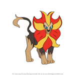 How to Draw Pyroar from Pokemon