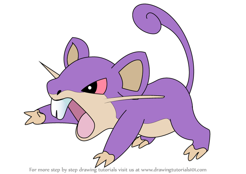 Learn How To Draw Rattata From Pokemon Pokemon Step By Step