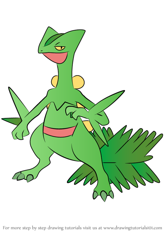 Learn How to Draw Sceptile from Pokemon Pokemon Step by