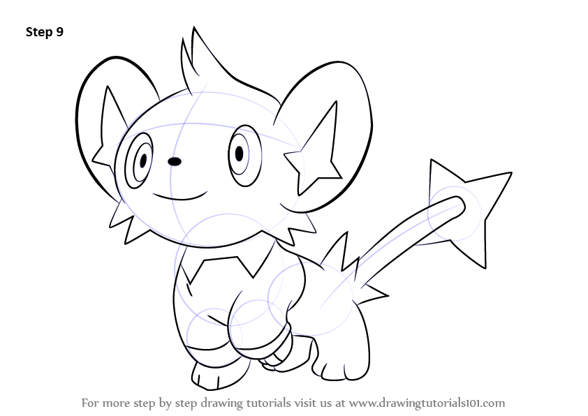 Step By Step How To Draw Shinx From Pokemon