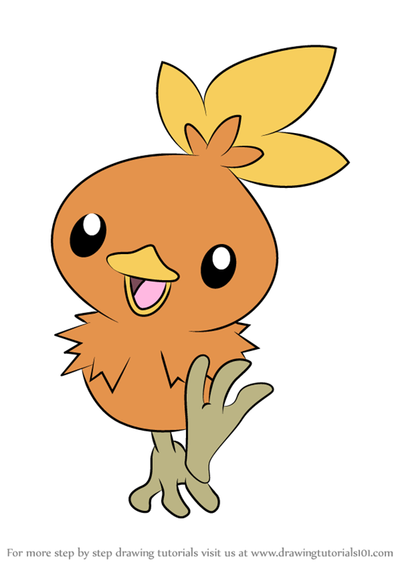 Learn How to Draw Torchic from