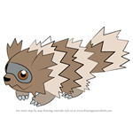How to Draw Zigzagoon from Pokemon