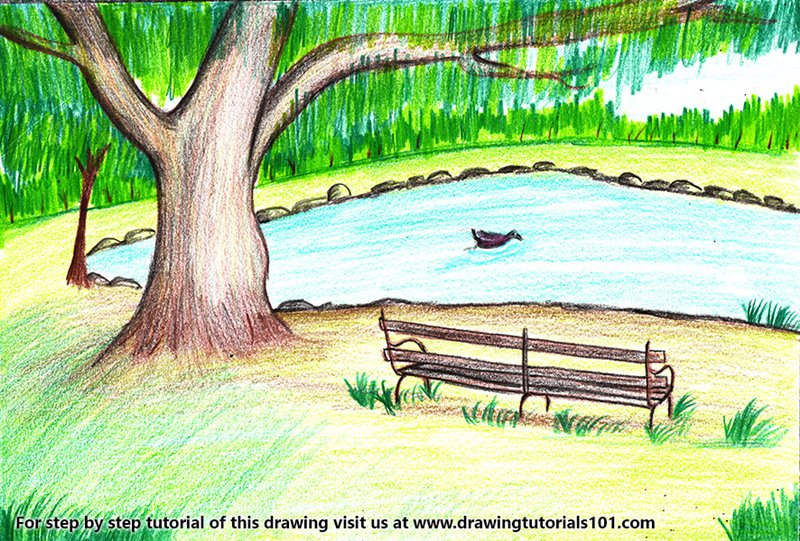 Bench under Tree Scenery Color Pencil Drawing