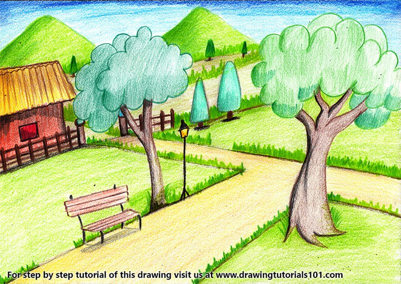 Garden Scenery Color Pencil Drawing