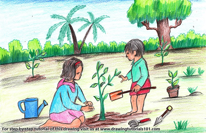 Tree Planting Scene Colored Pencils - Drawing Tree ...