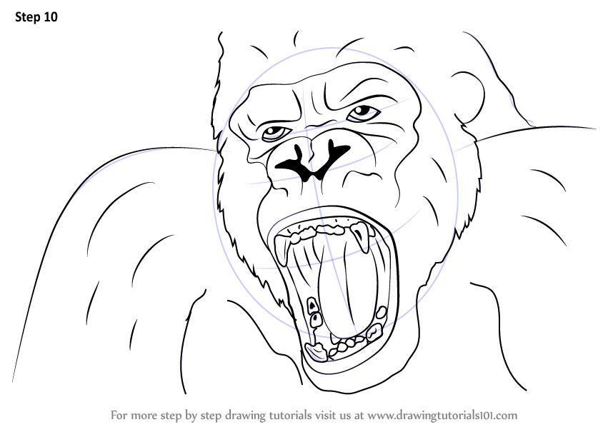 Learn How to Draw King Kong Face (King Kong) Step by Step : Drawing ...