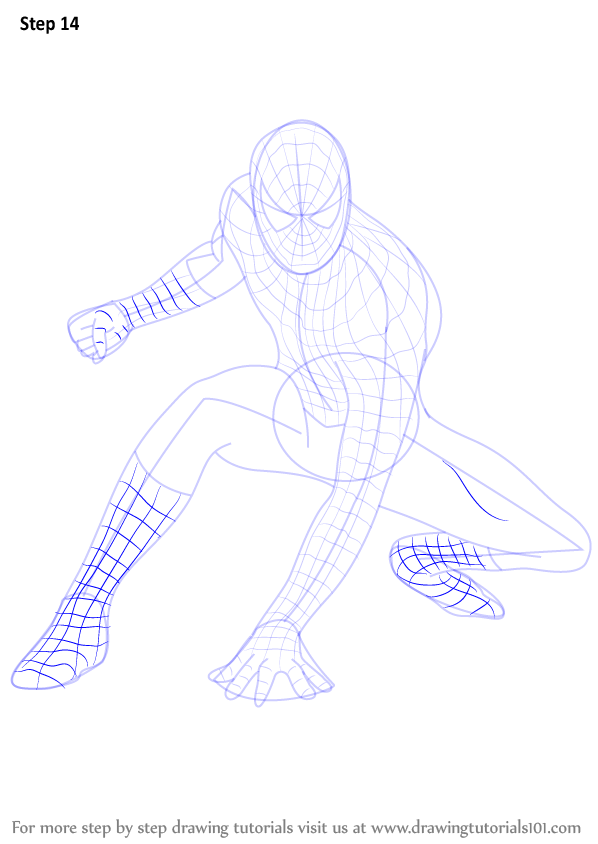 Learn How To Draw Spiderman Spiderman Step By Step