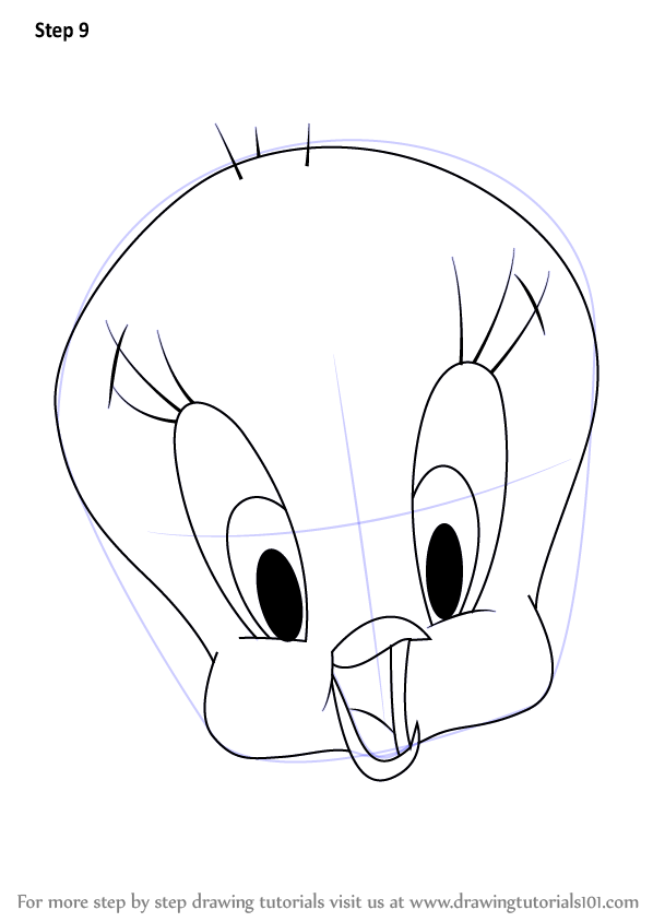 Learn How To Draw Tweety Bird Face Tweety Step By Step Drawing