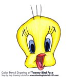 How to Draw Tweety Bird Face