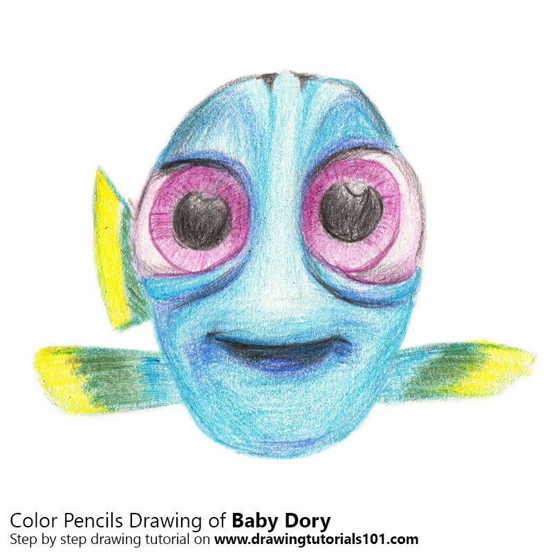 baby dory colored pencils drawing baby dory with color pencils