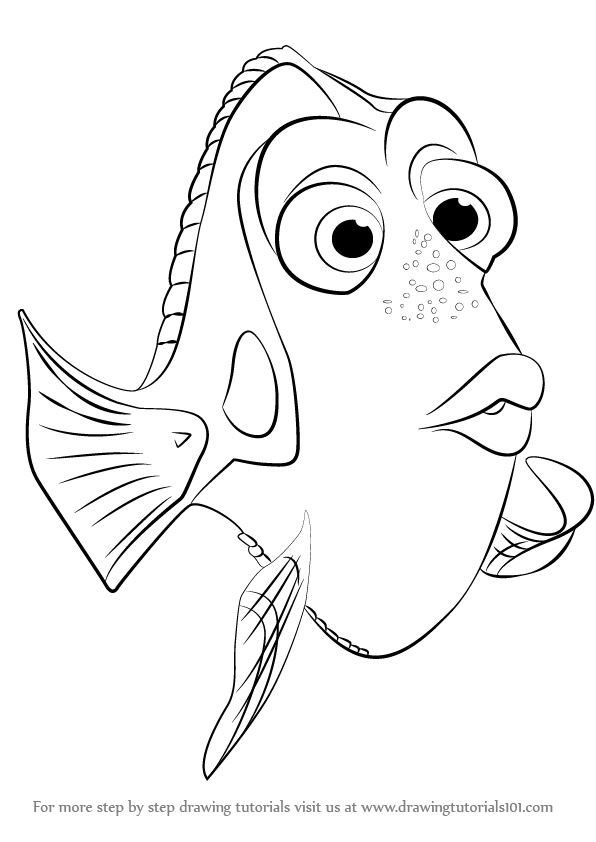 Learn How to Draw Dory from Finding Dory Finding Dory