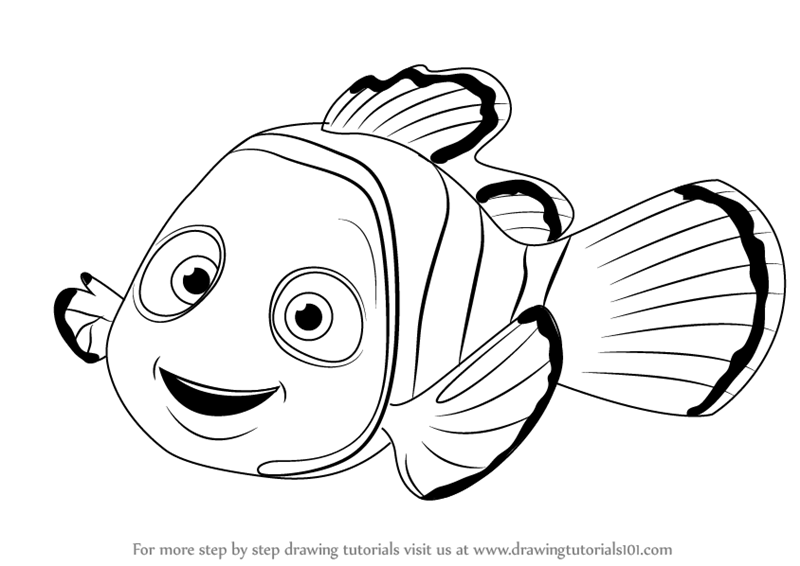Learn How To Draw Nemo From Finding Nemo Finding Nemo