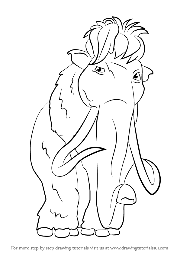 learn how to draw ellie from ice age ice age step by step