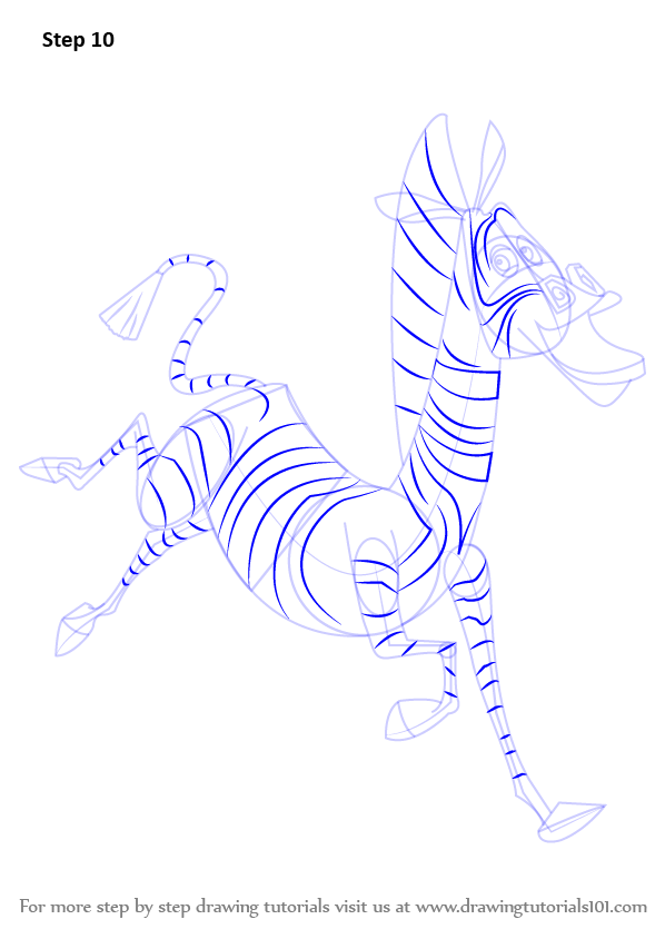 Step By Step How To Draw Marty The Zebra From Madagascar