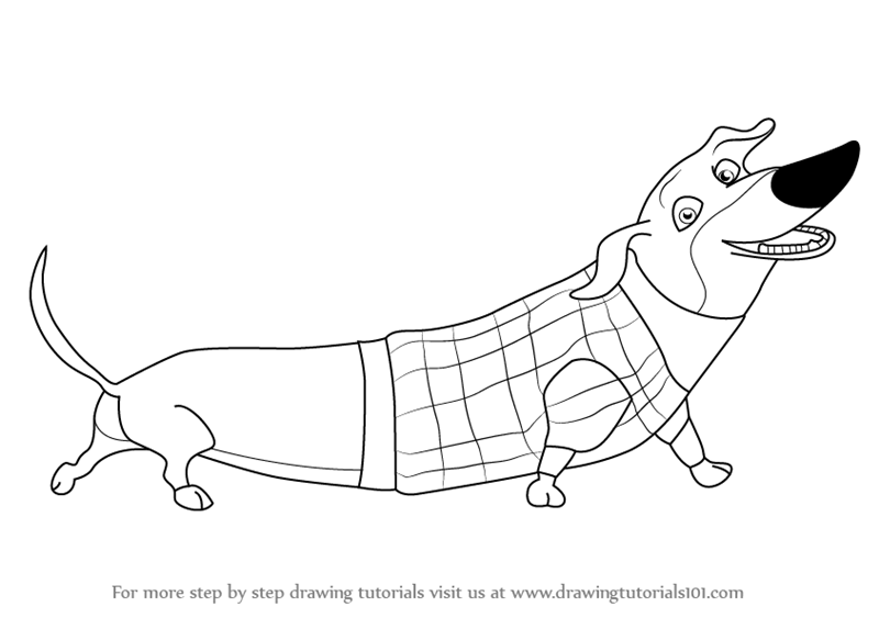 Learn How to Draw Mr Weenie from Open Season Open Season