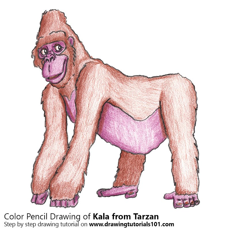 Kala from Tarzan Color Pencil Drawing