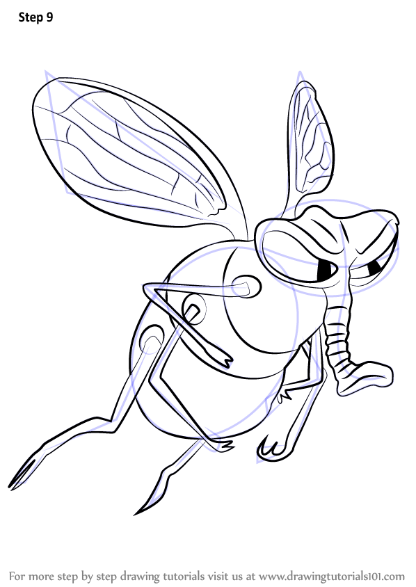learn how to draw fly from the ant bully  the ant bully