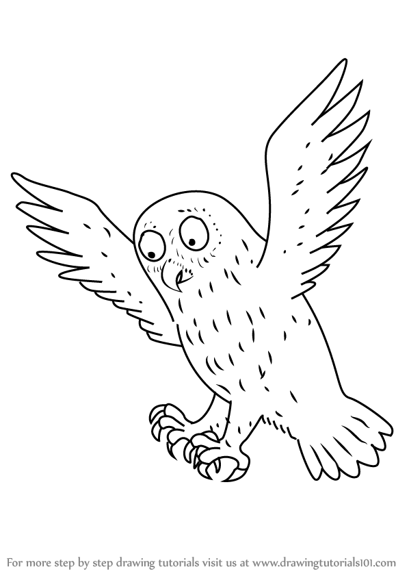 Learn How To Draw Owl From The Gruffalo Step By Drawing Tutorials