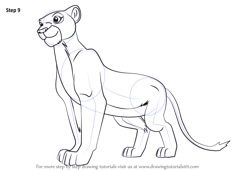 Learn How To Draw Nala From The Lion King The Lion King