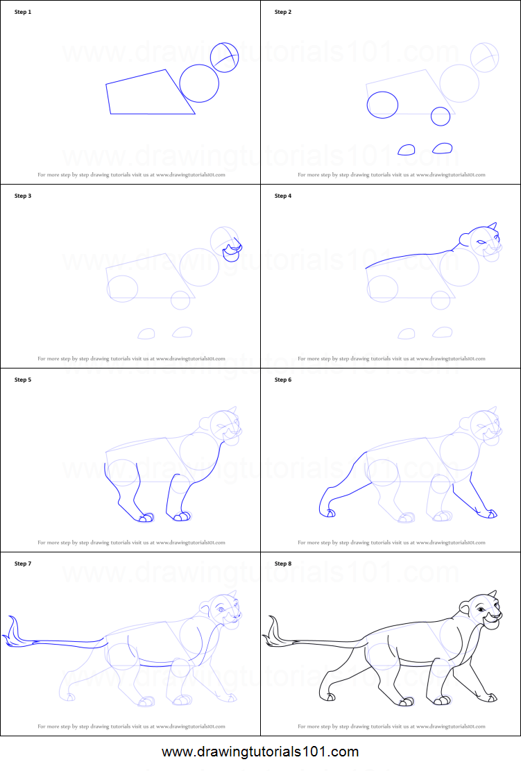Uncategorized How To Draw The Lion King how to draw sarabi from the lion king printable step by king