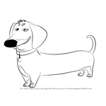 How to Draw Buddy from The Secret Life of Pets