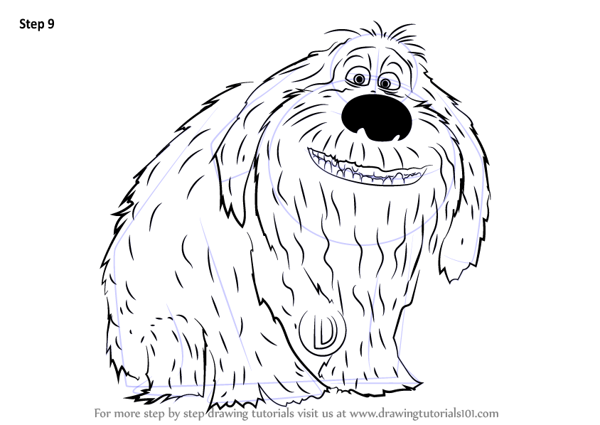 Learn How To Draw Duke From The Secret Life Of Pets The Secret Life Of Pets Step By Step