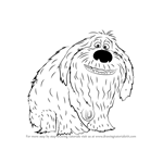 How to Draw Duke from The Secret Life of Pets