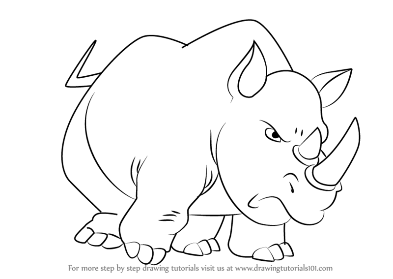Learn How to Draw Rhinoceros from