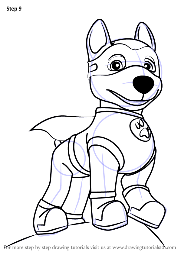 Learn How To Draw Apollo The Super Pup From Paw Patrol