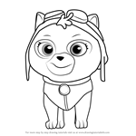How to Draw Cat Skye from PAW Patrol