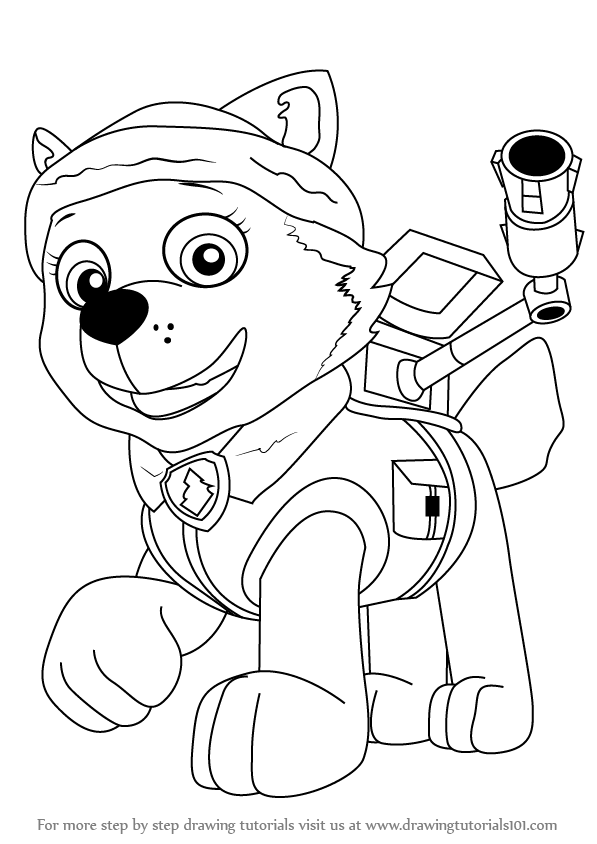 Learn How to Draw Everest from PAW Patrol PAW Patrol