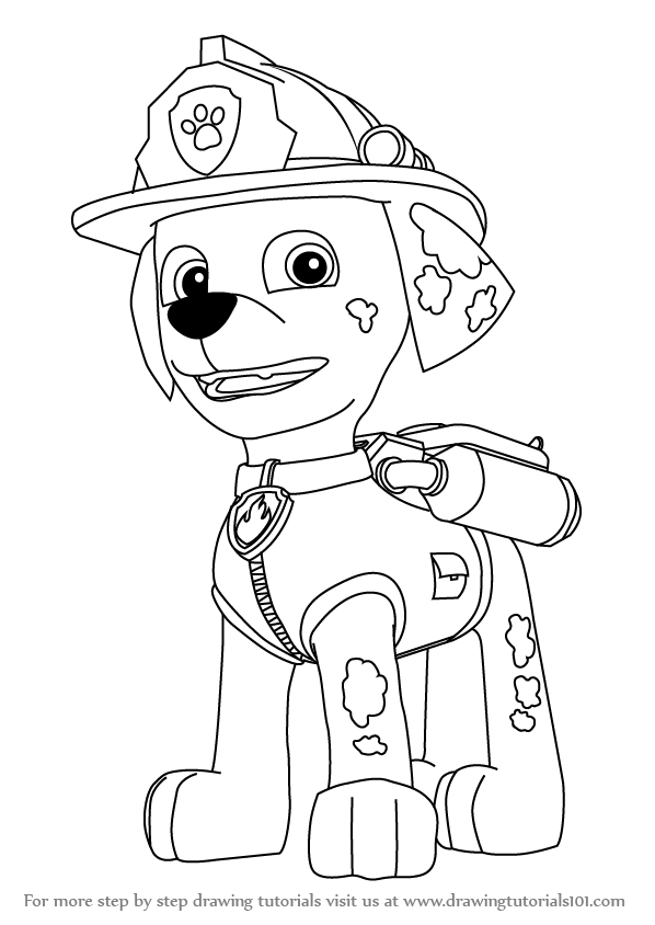 stepstep how to draw marshall from paw patrol